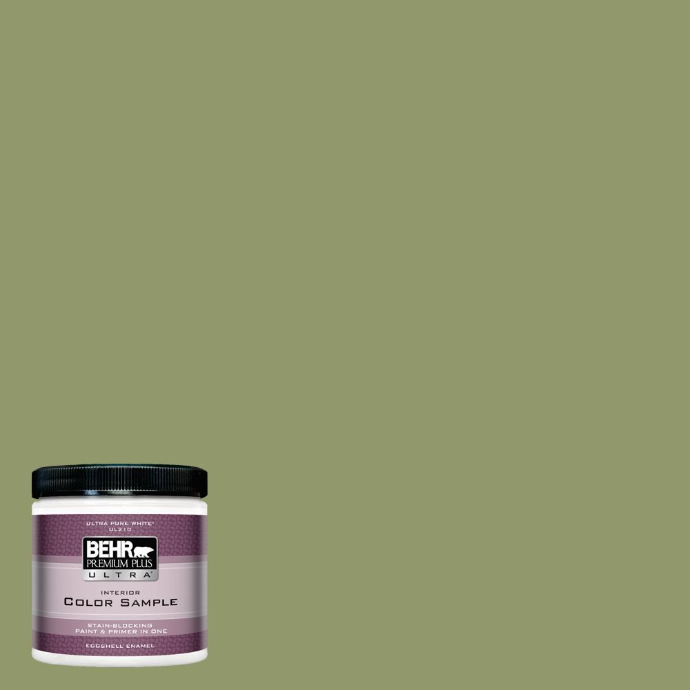 #HDC SP14 2 Exotic Palm Eggshell Enamel Interior Paint And