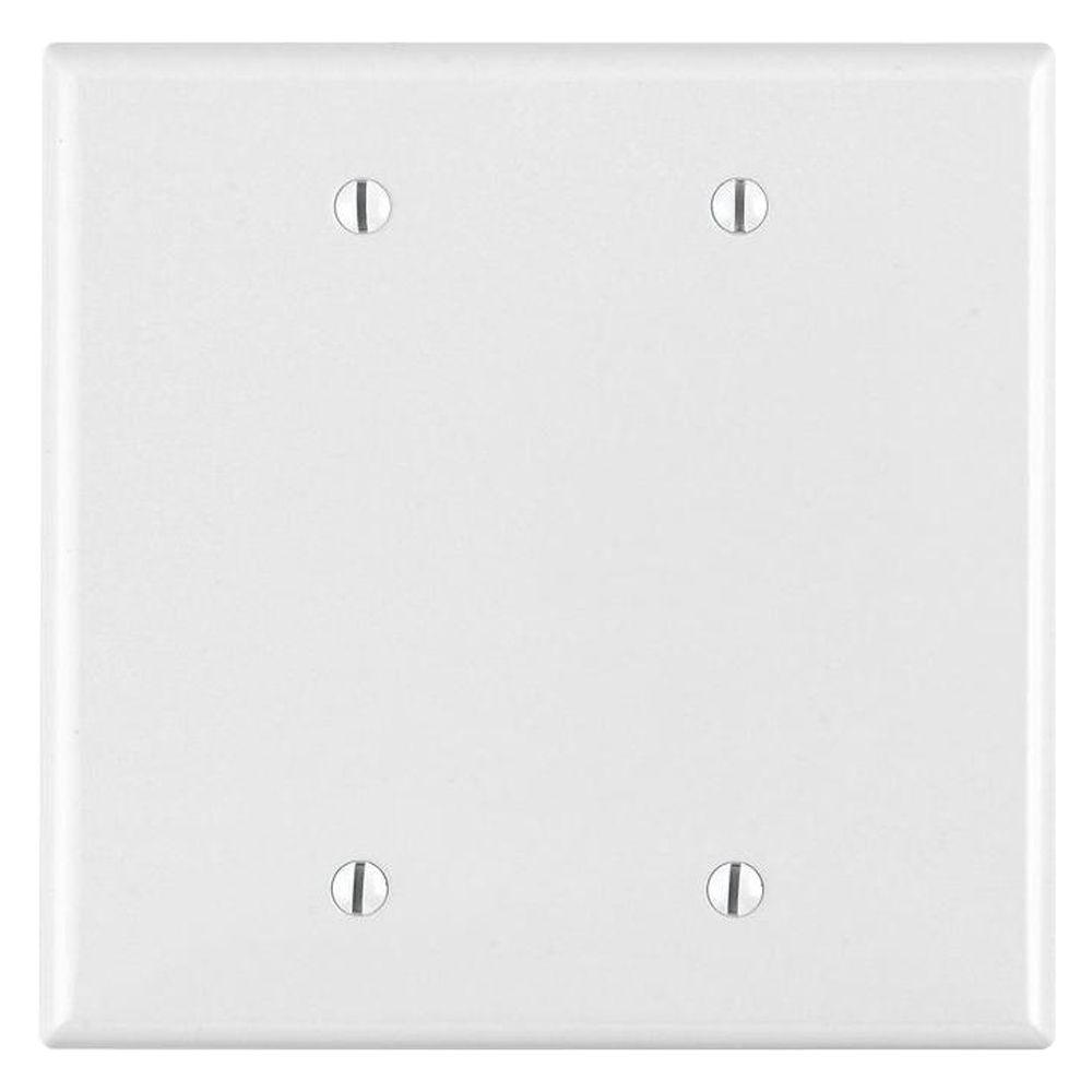 Blank Switch Plate Extraordinary Leviton 2Gang Midway Blank Nylon Wall Plate Ivoryr510Pj2300I Decorating Inspiration