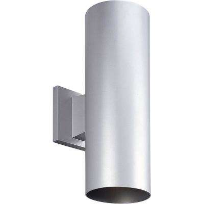 2-Light Metallic Gray Integrated LED Outdoor Wall Mount Cylinder Light