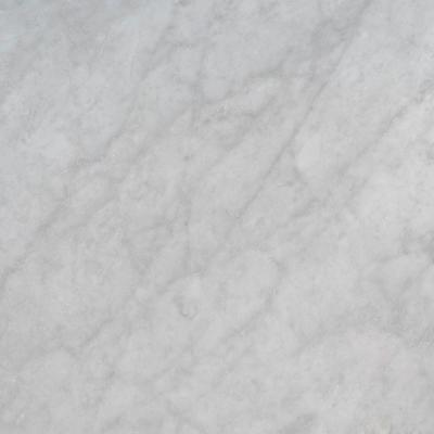 3 in. x 3 in. Marble Countertop Sample in Carrara White Honed
