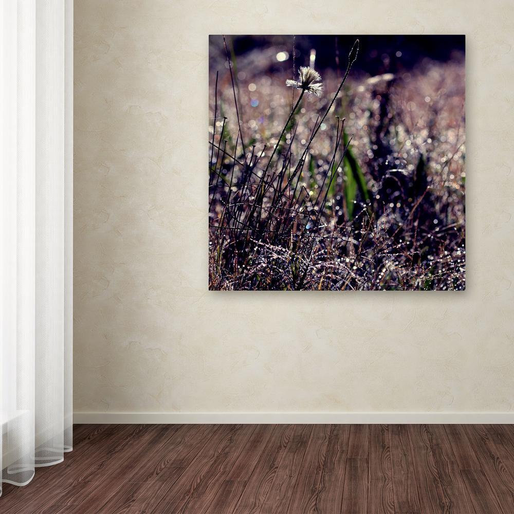 Trademark Fine Art 18 in. x 18 in. ''Purple Morning'' by