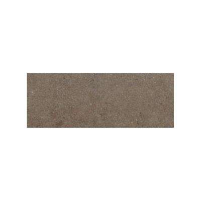 City View Neighborhood Park 3 in. x 12 in. Porcelain Bullnose Floor and Wall Tile
