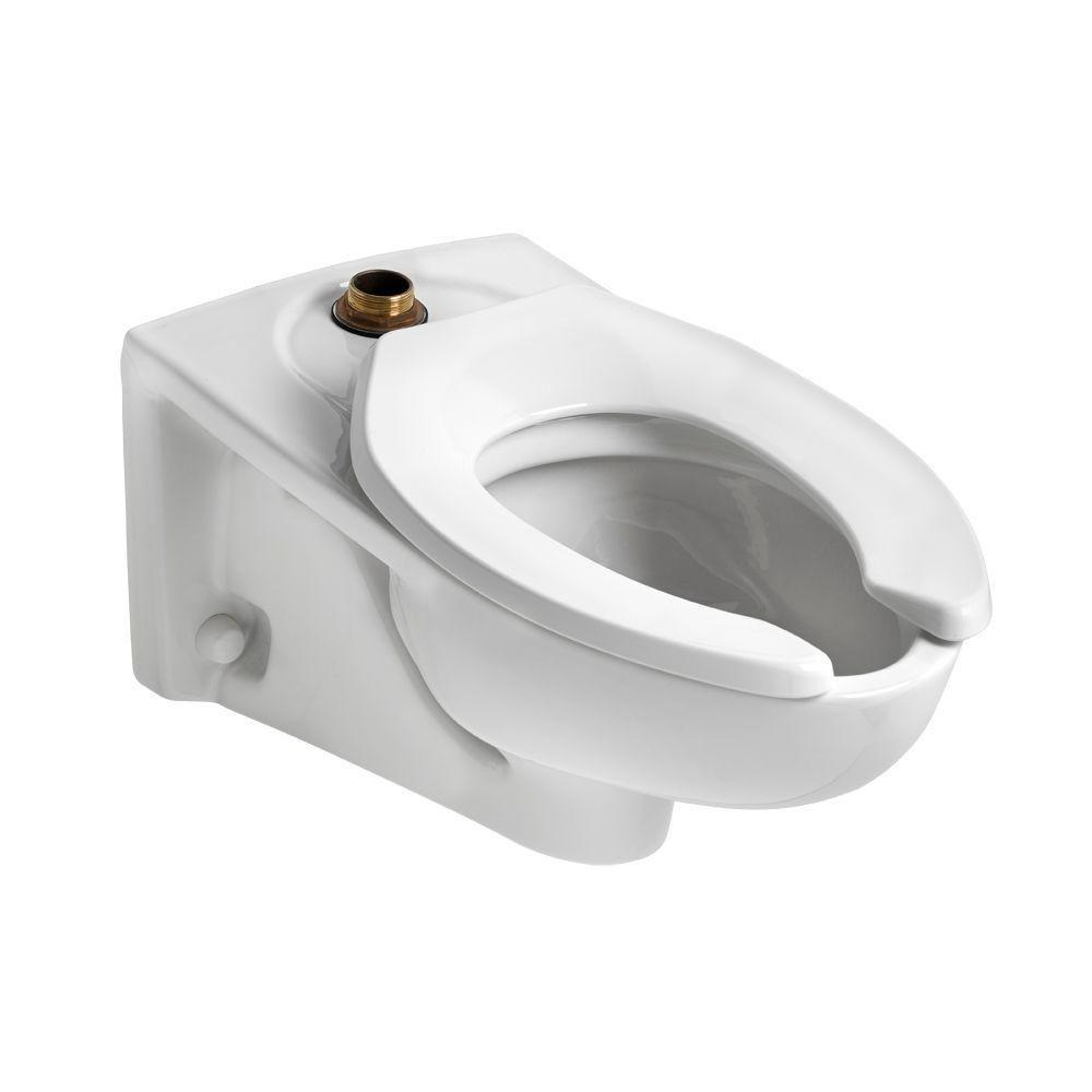 Afwall FloWise EverClean 1.1 GPF Elongated Toilet Bowl Only with Top
