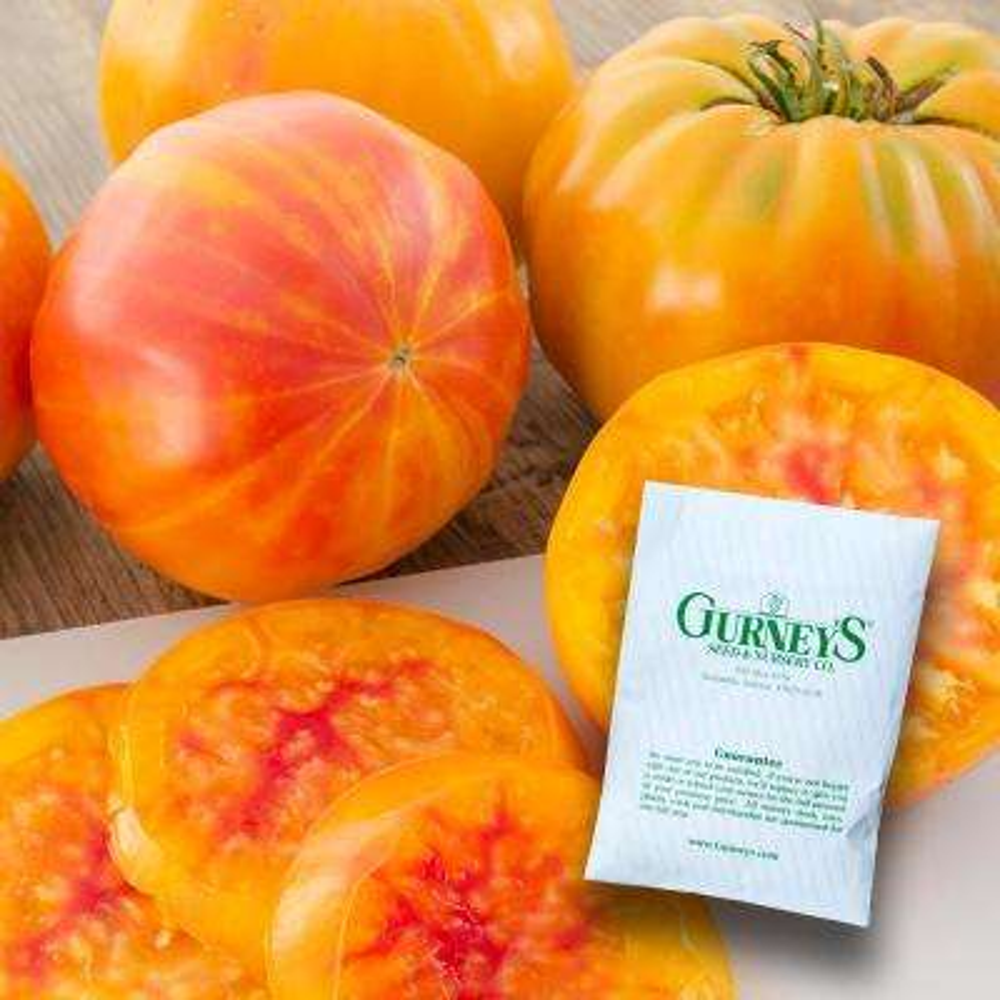 Tomato Big Rainbow (30 Seed Packet)