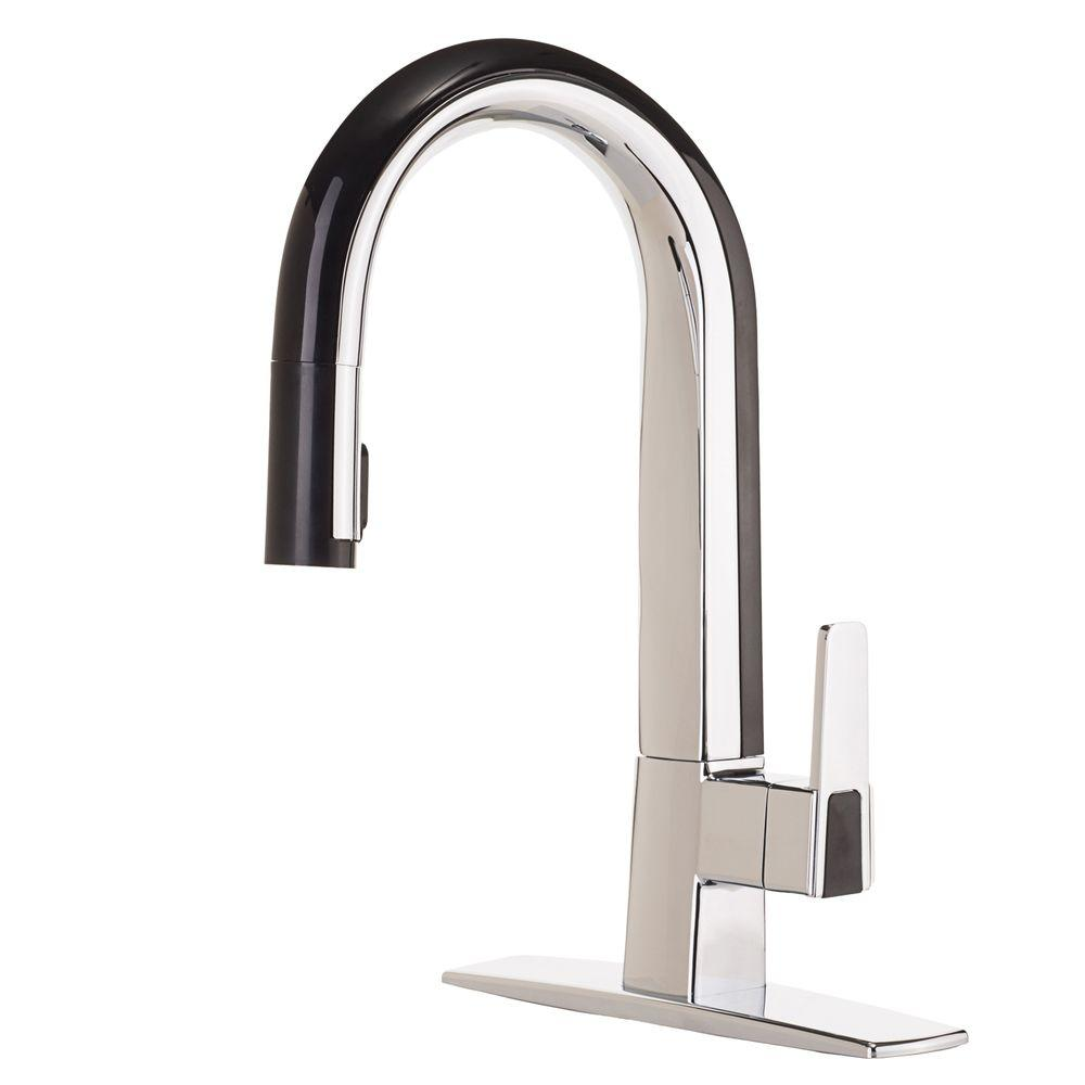 Cleanflo Matisse Single Handle Pull Down Sprayer Kitchen Faucet In