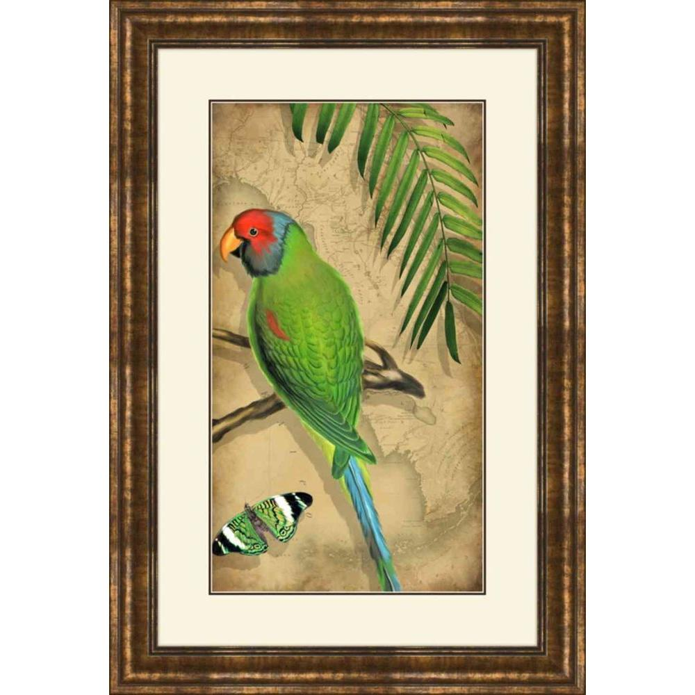 "null 17.5 in. x 25.5 in. ""Parrota A"" Framed Wall Art"