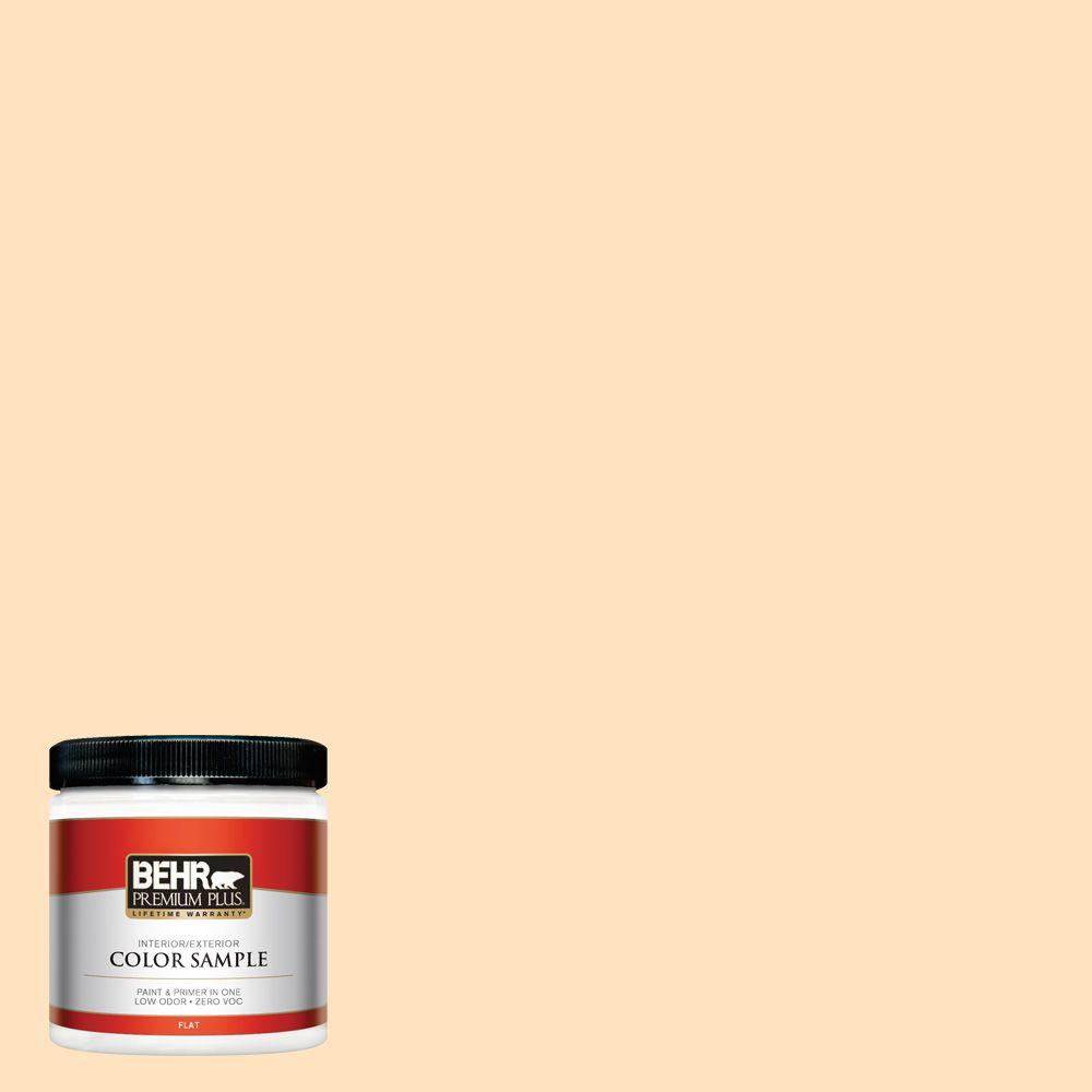 8 oz. #P240-1 Cheese Powder Interior/Exterior Paint Sample