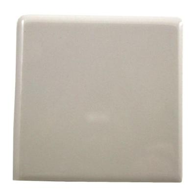 Almond 2x2 Tile Trim Tile The Home Depot