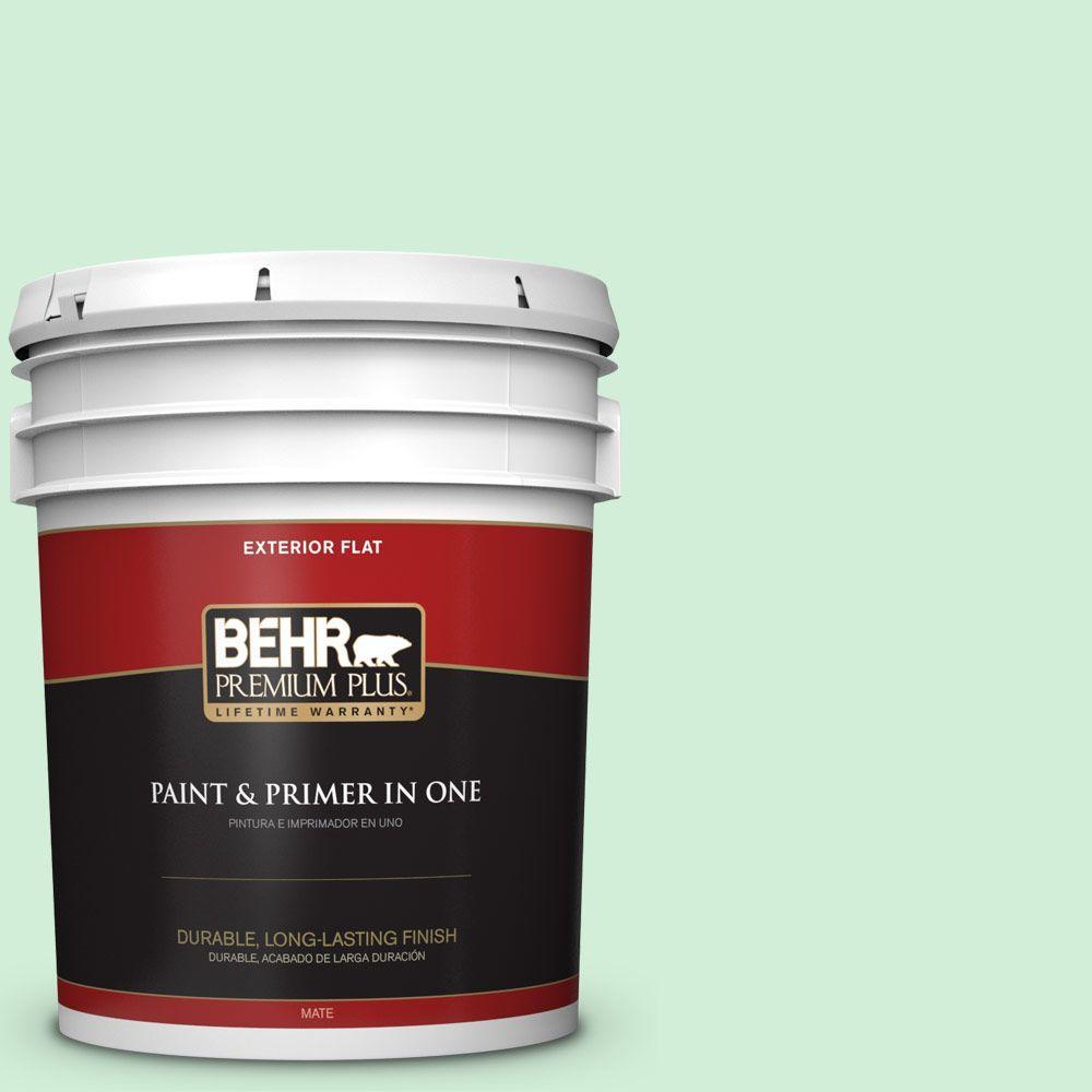 BEHR Premium Plus 5-gal. #P400-2 End of the Rainbow Flat Exterior Paint