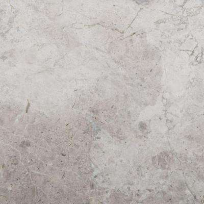 Silver 18 in. x 18 in. Marble Floor and Wall Tile