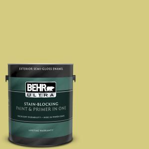 Behr Ultra 1 Gal P350 4 Spring Grass Semi Gloss Enamel Exterior Paint And Primer In One 585401 The Home Depot