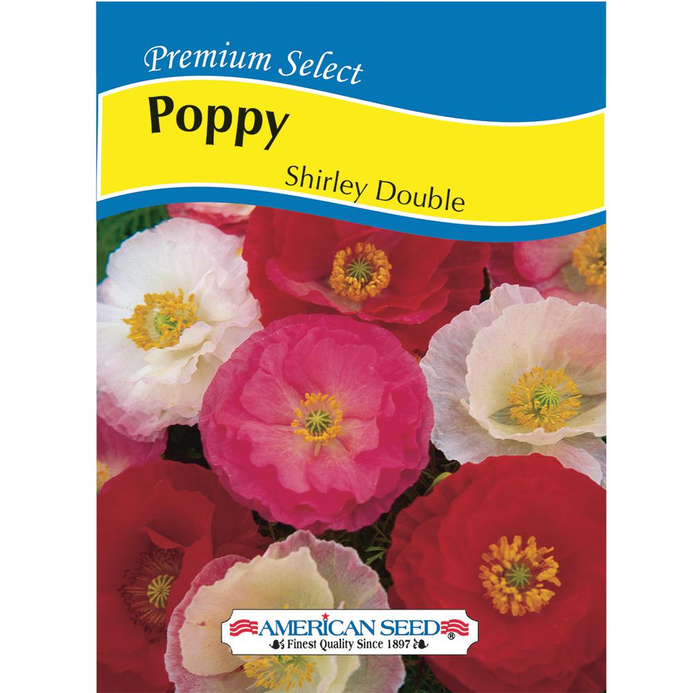 Poppy Shirley Double AM Seed
