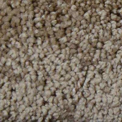 Carpet Sample - Great Moments II (S) - Color Avalon Texture 8 in. x 8 in.