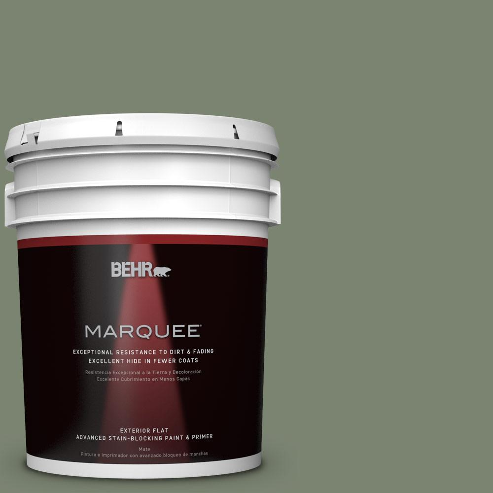 BEHR MARQUEE 5-gal. #PPU11-18 Cactus Garden Flat Exterior Paint