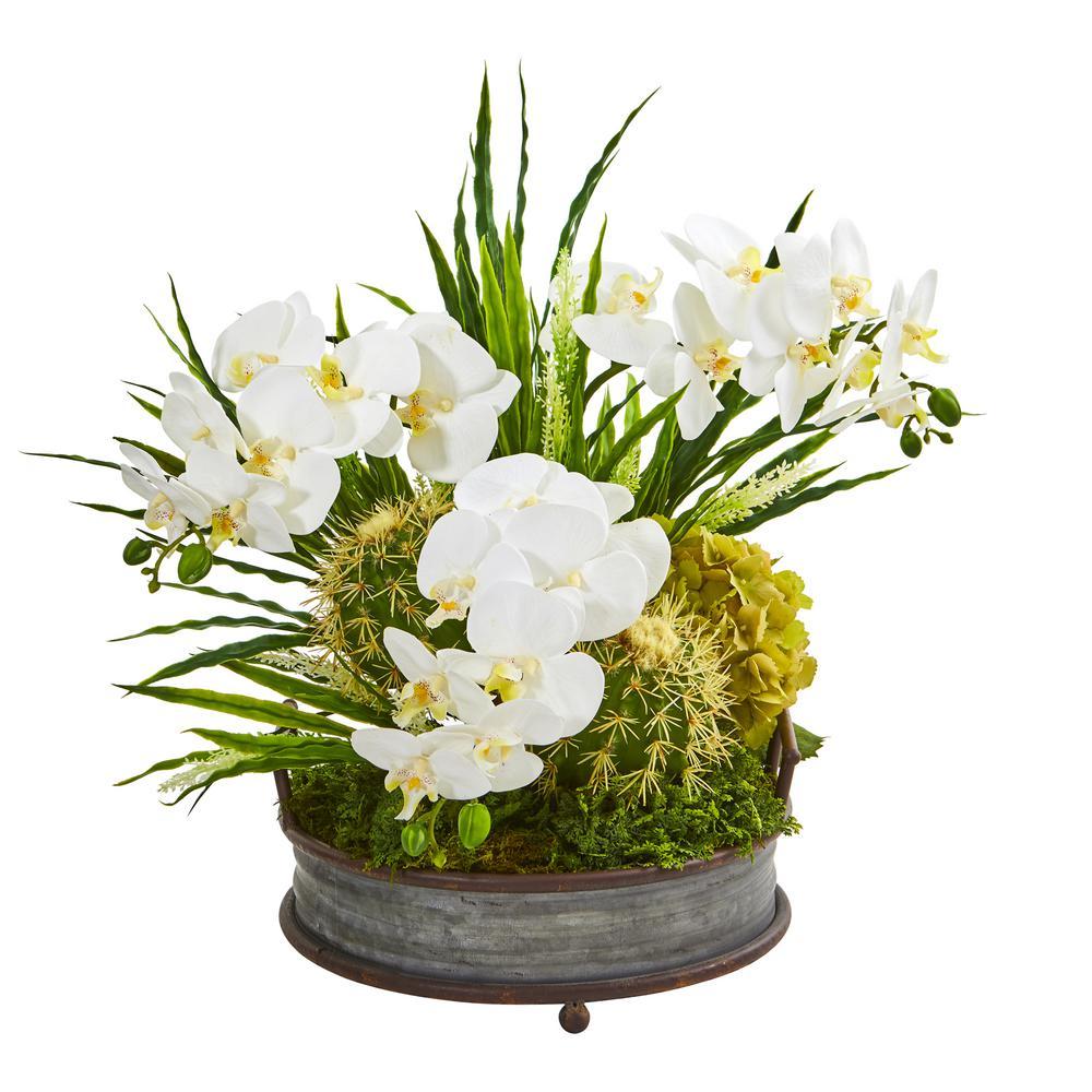 Phalaenopsis Orchid and Cactus Artificial Arrangement