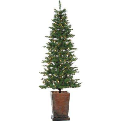 Colorado Fir 6 ft. Artificial Holiday Potted Tree with Smart LED Lighting