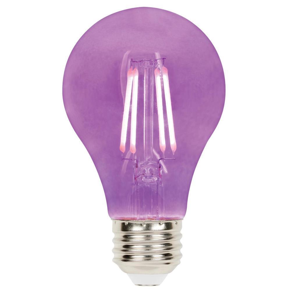 40-Watt Equivalent A19 Dimmable Purple Filament LED Light Bulb