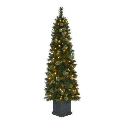 6 ft. Pre-Lit LED Alexander Pine Potted Artificial Christmas Tree with 457 Tips and 150 Warm White Lights
