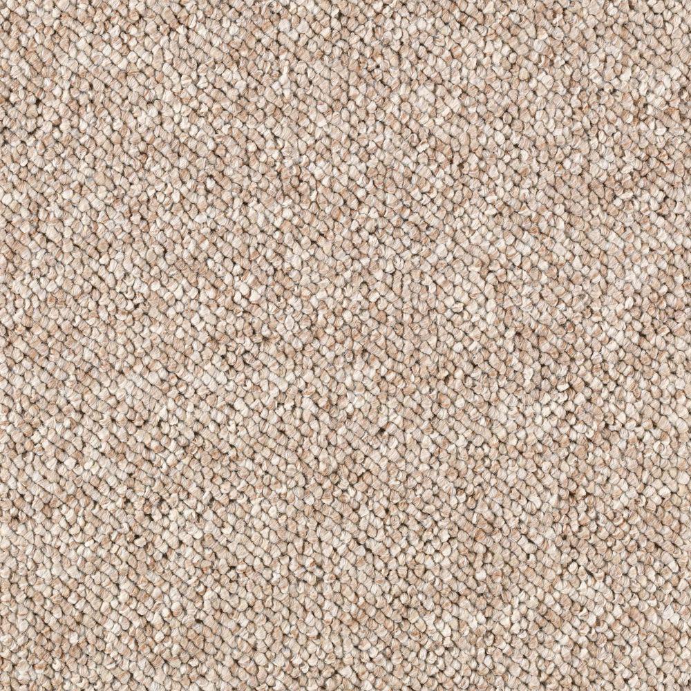 Carpet Sample - Tidewater - Color Carved Wood Loop 8 in x 8 in