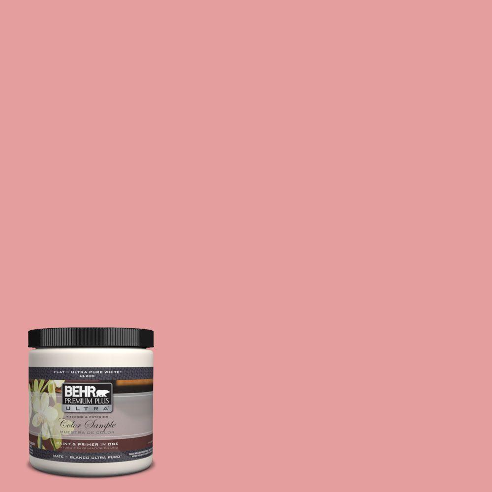 8 oz. #150D-4 Pale Berry Interior/Exterior Paint Sample