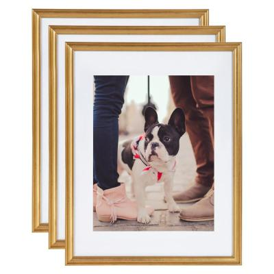 Adlynn 14 in. x 18 in. matted to 11 in. x 14 in. Gold Picture Frames (Set of 3)