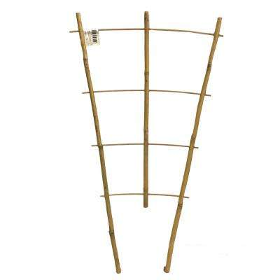 24 in. H Bamboo Ladder Trellis Single Piece