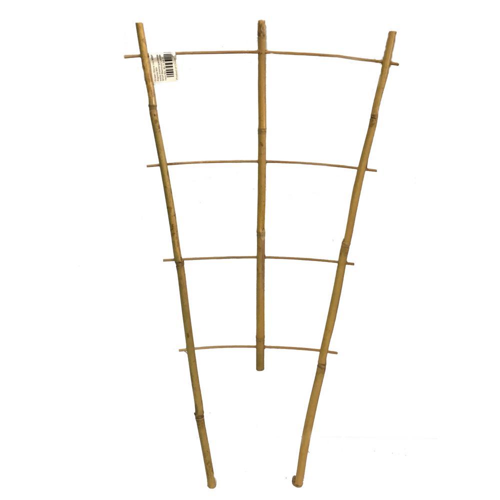 24 in. H Bamboo ladder trellis, Set of 3