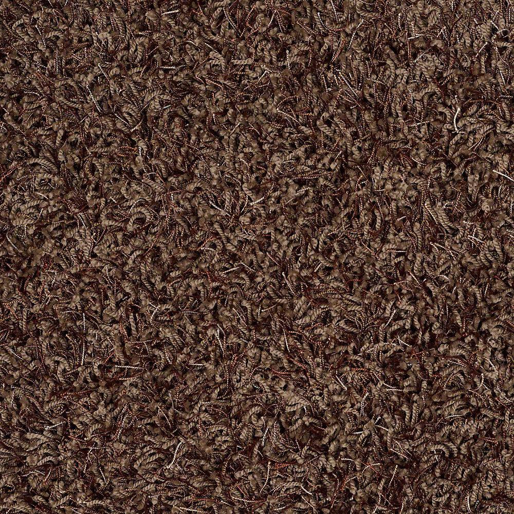 Platinum Plus Carpet Sample Royal Step In Color Cocoa