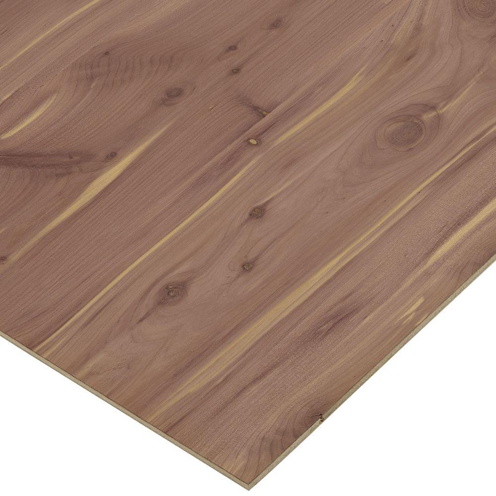 1 4 In X 2 Ft X 4 Ft Cedar Plywood 1506155 The Home Depot