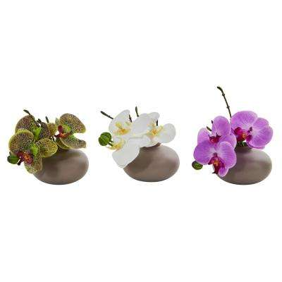 7 in. Phalaenopsis Orchid Artificial Arrangement (Set of 3)