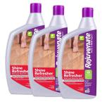 Rejuvenate 16 Oz Floor Renewer System Rj16flopkit The