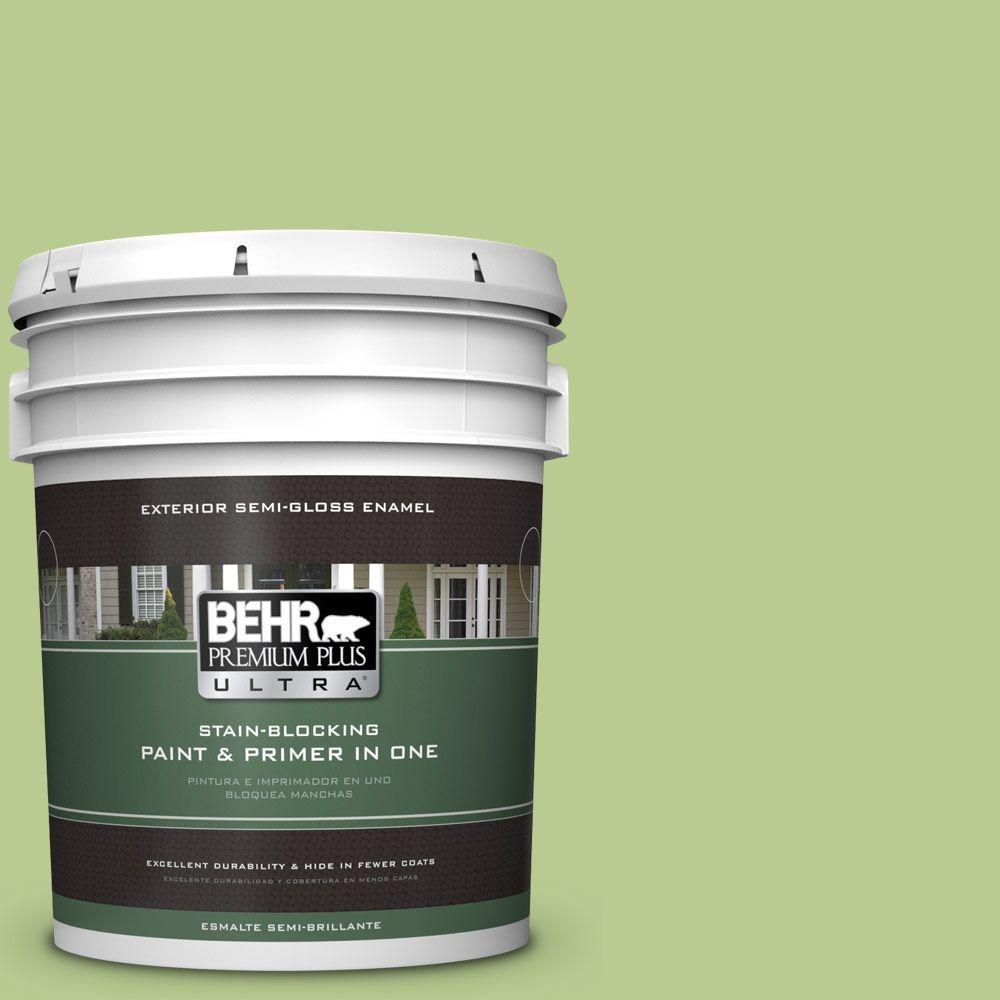 BEHR Premium Plus Ultra 5-gal. #420D-4 Marsh Fern Semi-Gloss Enamel Exterior Paint