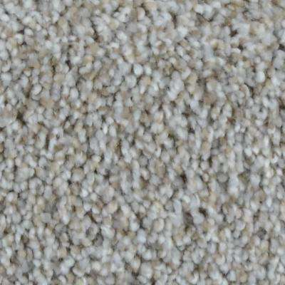 Carpet Sample - Stargazer - Color Traveler Texture 8 in. x 8 in.