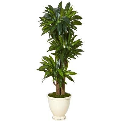 64 in. Corn Stalk Dracaena Artificial Plant in Urn Planter (Real Touch)