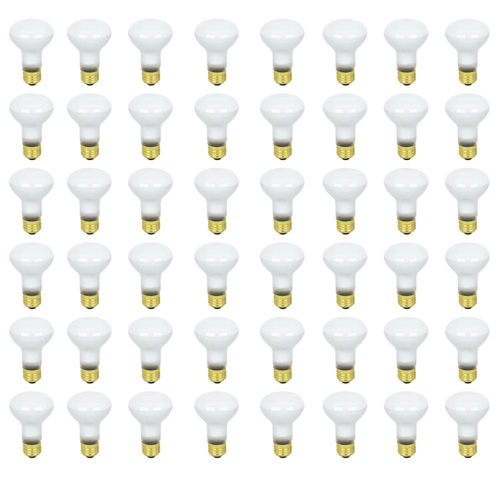 45-Watt Soft White (2700K) R20 Dimmable Incandescent Flood Light Bulb Maintenance Pack (48-Pack)