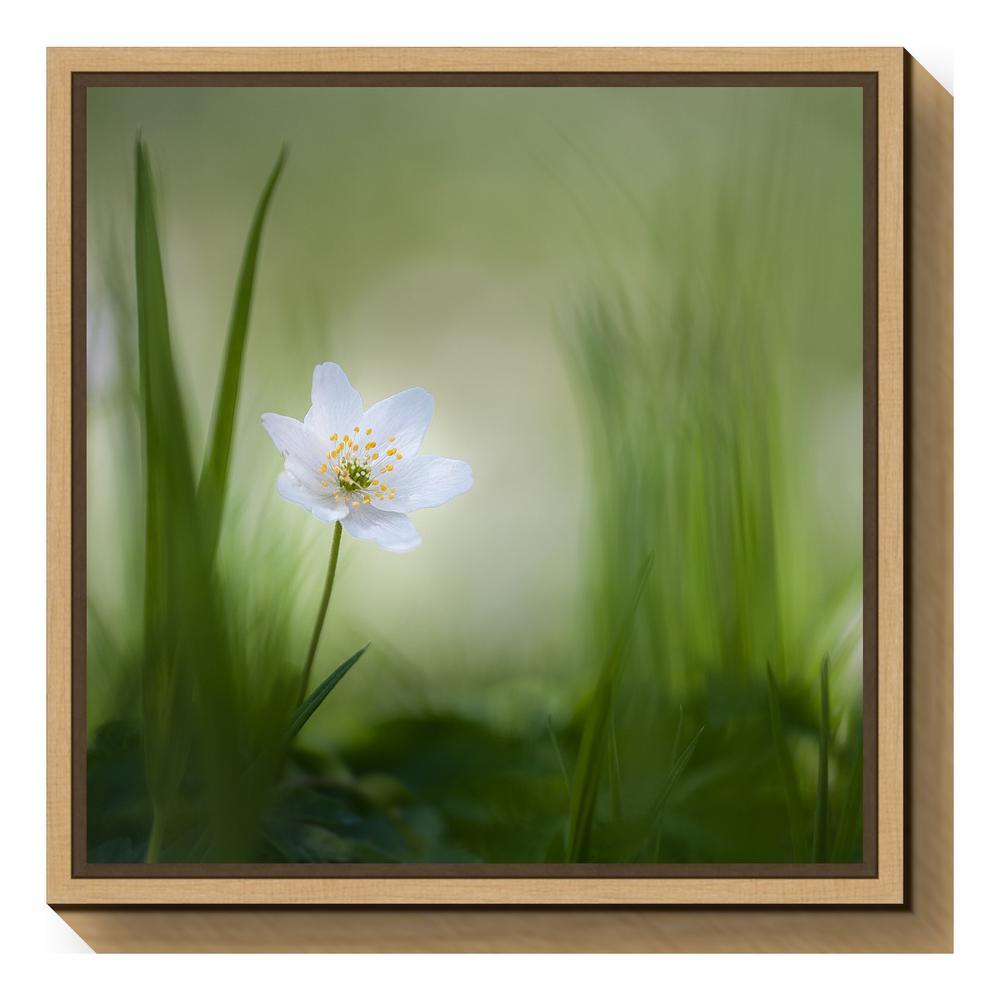 """Alone"" by Piet Haaksma Framed Canvas Wall Art"