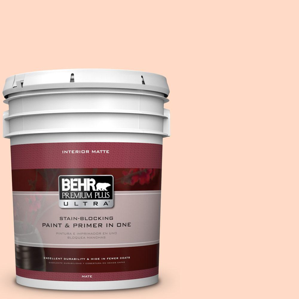5 gal. #250C-2 Sugared Peach Matte Interior Paint and Primer in