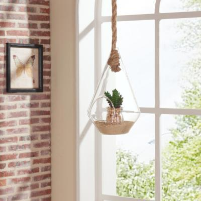 10 in. Diamond Shape Clear Glass Hanging Planter with Rope Decorative Vase