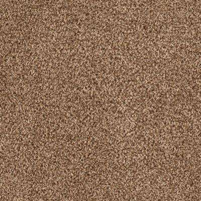 Carpet Sample - Lavish I - Color Old West Texture 8 in. x 8 in.