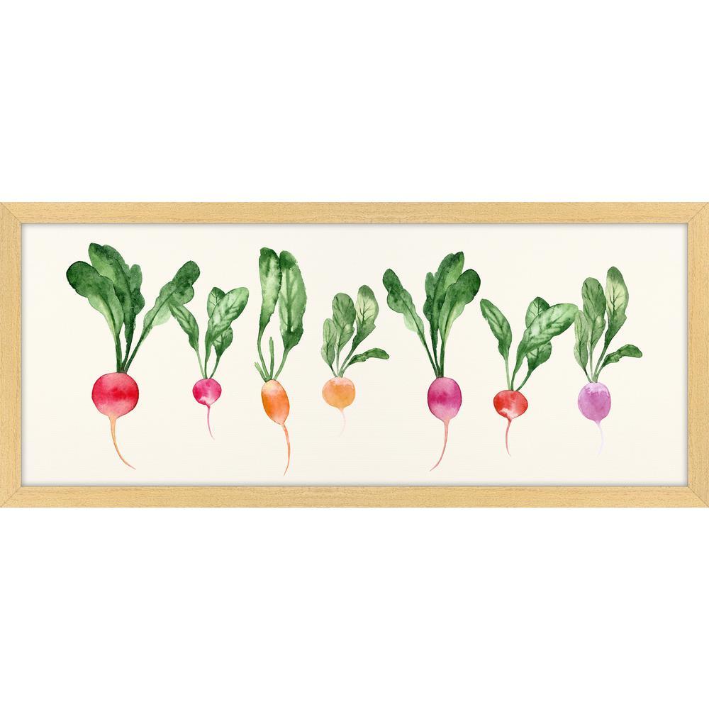 "26 in. x 11 in. ""Horizontal Radishes"" Framed Giclee Print Wall Art"