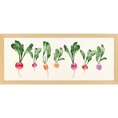 "26 in. x 11 in. ""Horizontal Radishes"" Framed Giclee Print Wall Art"