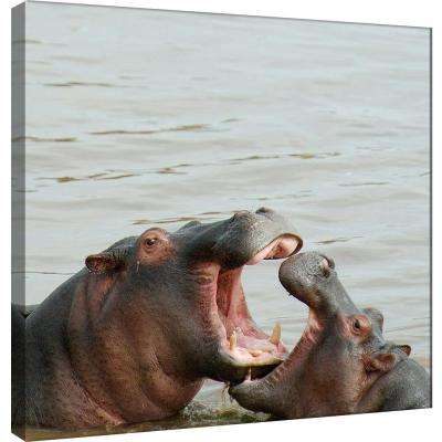 15.in x 15.in ''Hippos'' Printed Canvas Wall Art