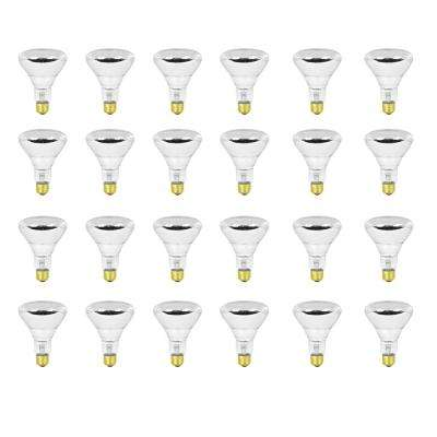 100-Watt Soft White (2700K) BR30 Dimmable Incandescent 12-Volt Pool and Spa Flood Light Bulb (24-Pack)