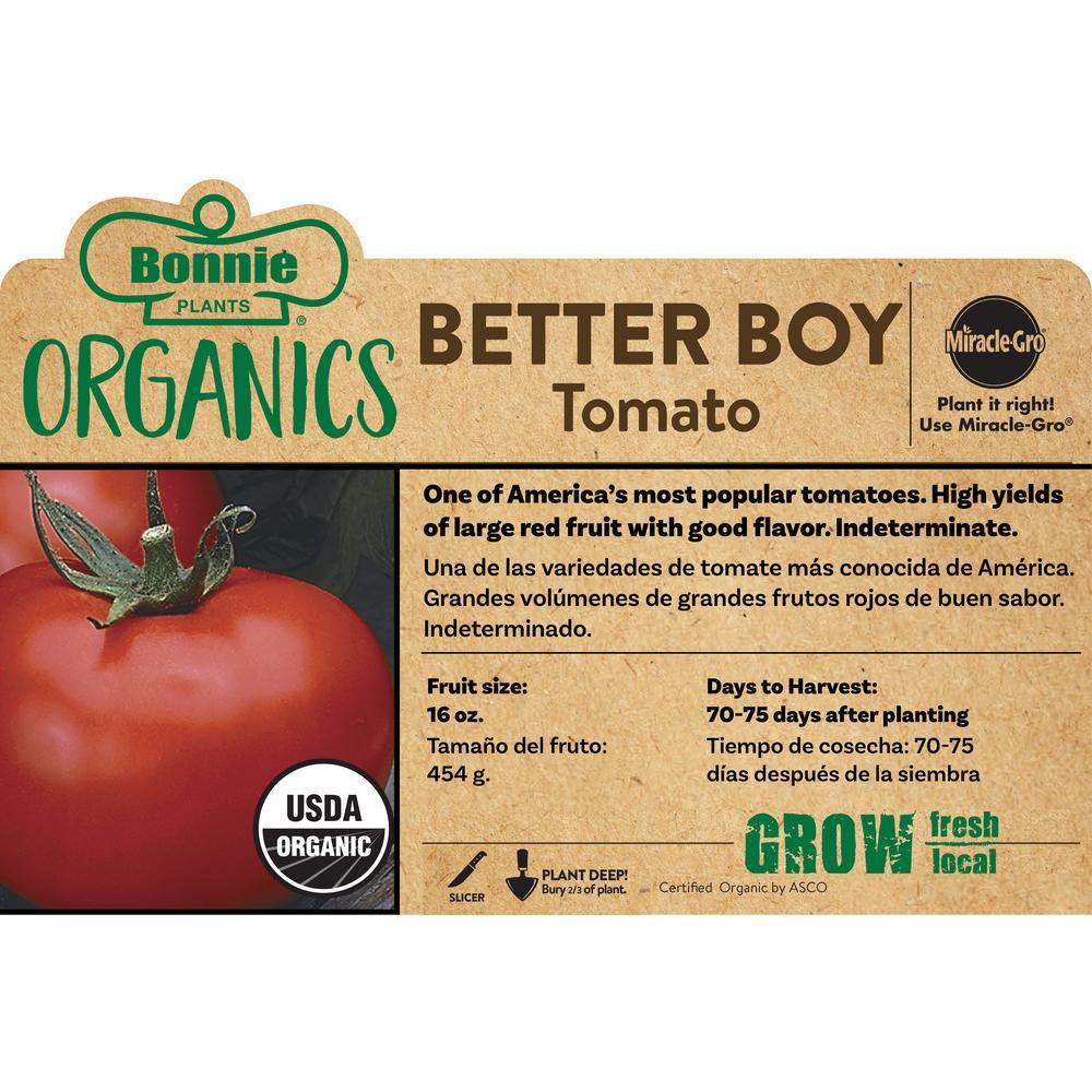Organic Better Boy