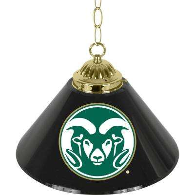 Colorado State University 14 in. Single Shade Stainless Steel Hanging Lamp