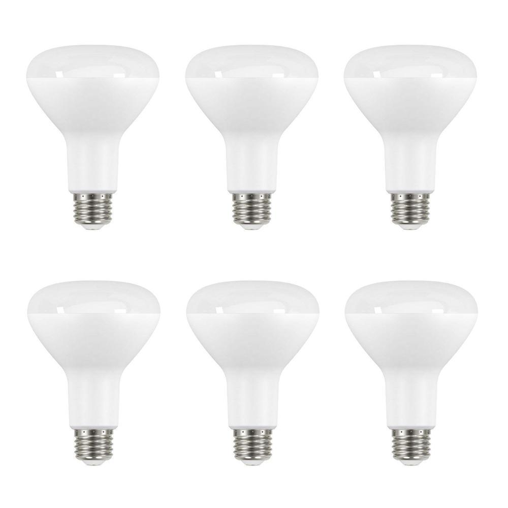65 Watt Equivalent BR30 Dimmable LED Light Bulb, Daylight (6 Pack)