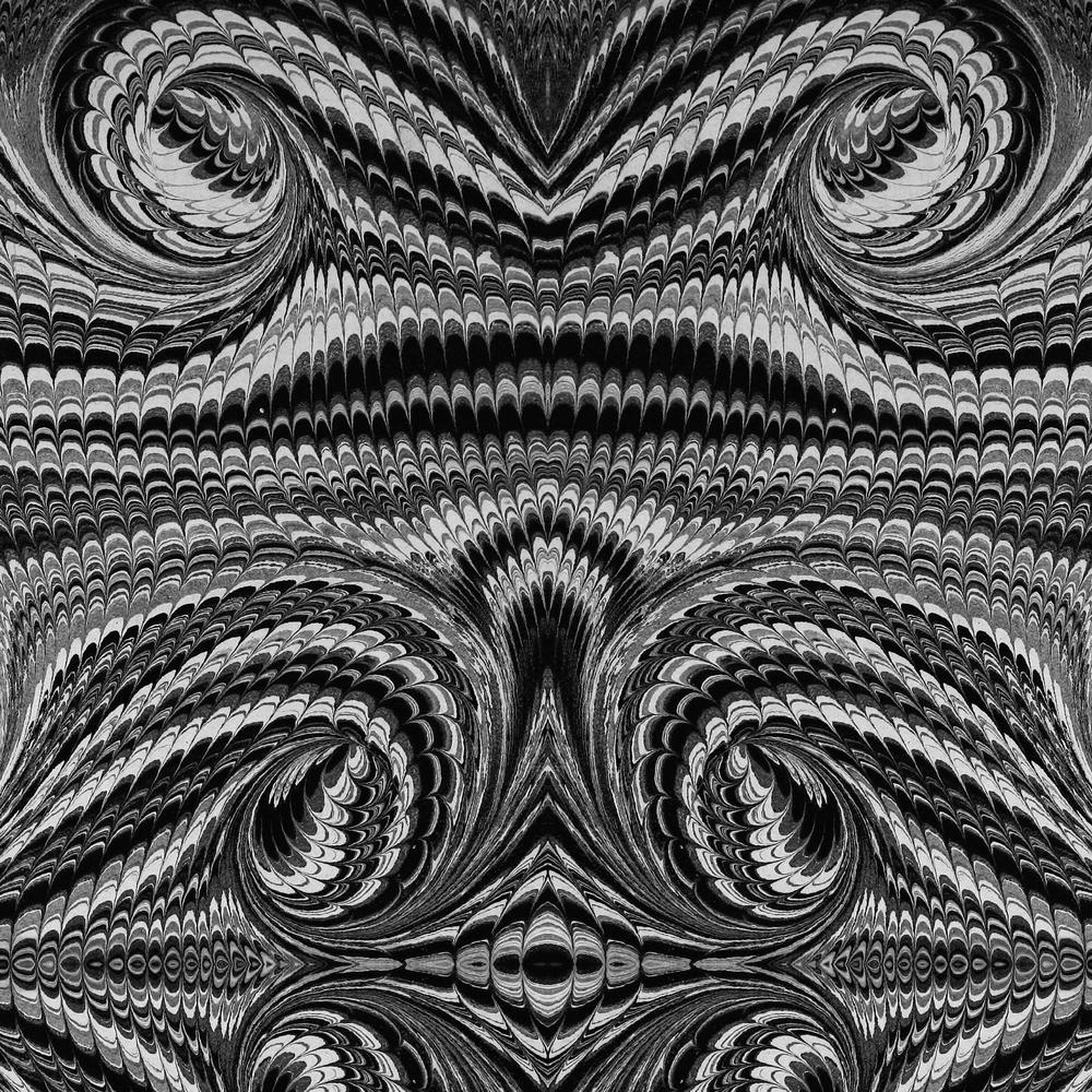 Mitchell Black ABRA Collection Script Premium Matte Wallpaper