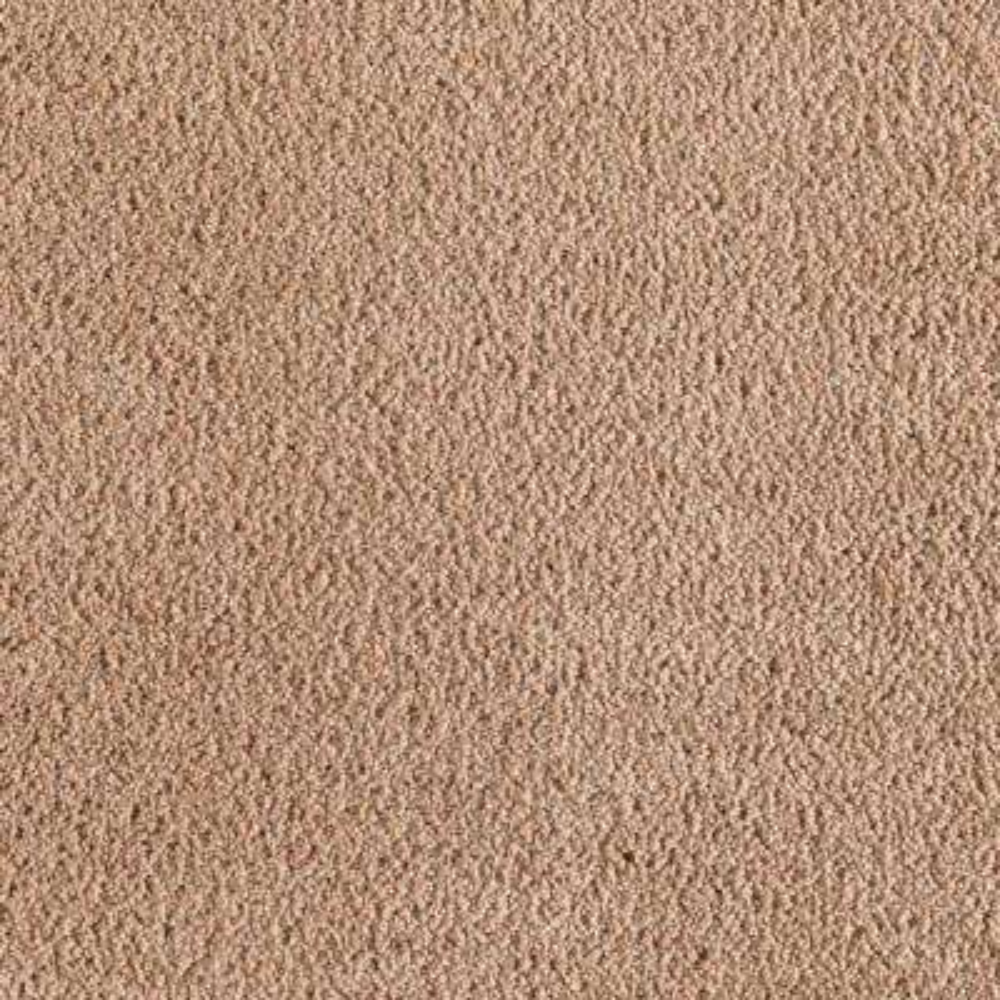 Carpet Sample - Wesleyan II - Color Beige Allure Texture 8 in. x 8 in.