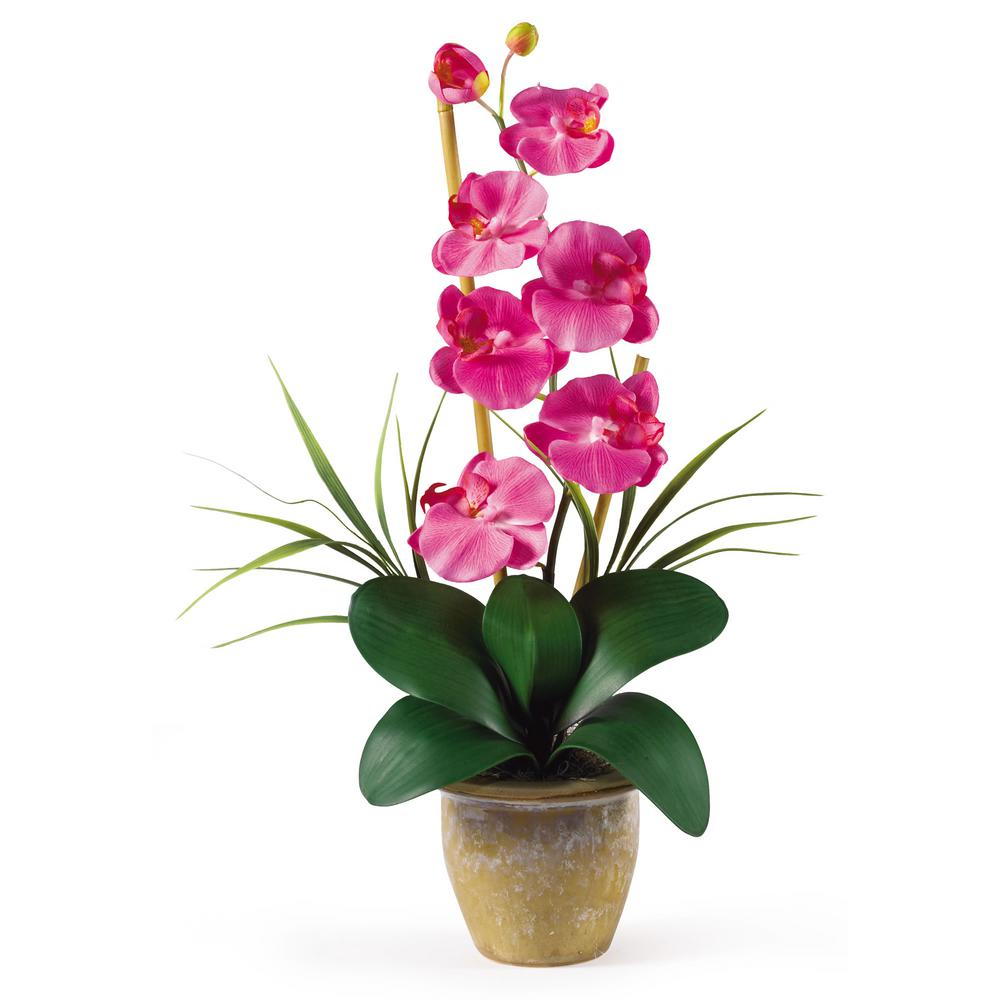 Nearly Natural 21 in. Phalaenopsis Silk Orchid Flower Arrangement in Dark Pink Nearly Natural 21 in. Phalaenopsis Silk Orchid Flower Arrangement in Dark Pink