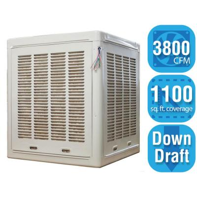 Champion Cooler 6500 CFM Side-Draft Wall/Roof Evaporative